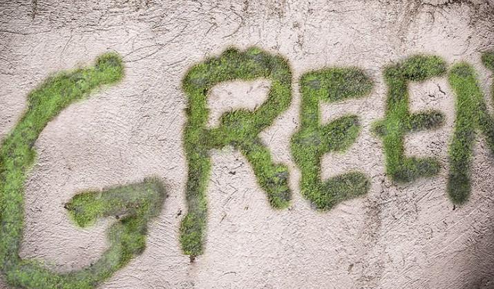 Когда вы нарисуете на стене этой смесью все решат, что это вандализм... Но несколько дней спустя не смогут остаться равнодушны!