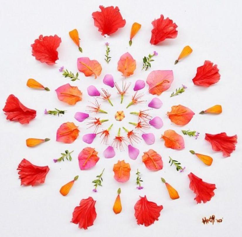 Аппликации из цветочных лепестков от Хонг Йи... Какая же красота!