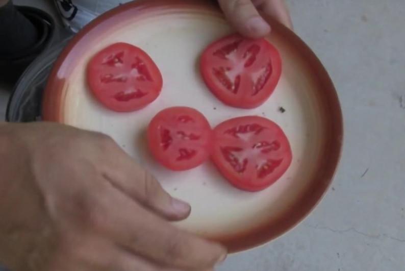 Он положил 4 ломтика помидора в емкость с почвой! Вот что произошло через 12 дней…