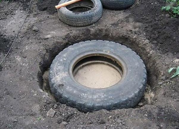 Соседка выкопала три ямы на заднем дворе… Я долго ломала голову, пока не увидела результат!
