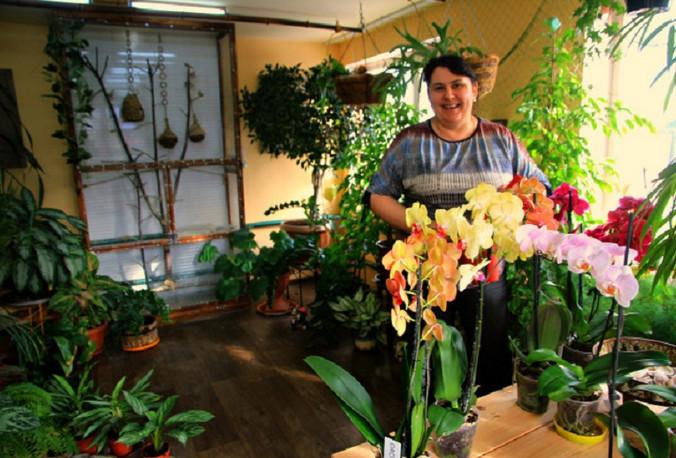 Жизнь рядом с орхидеями: цветы, которые умеют обижаться и источать благодарность!