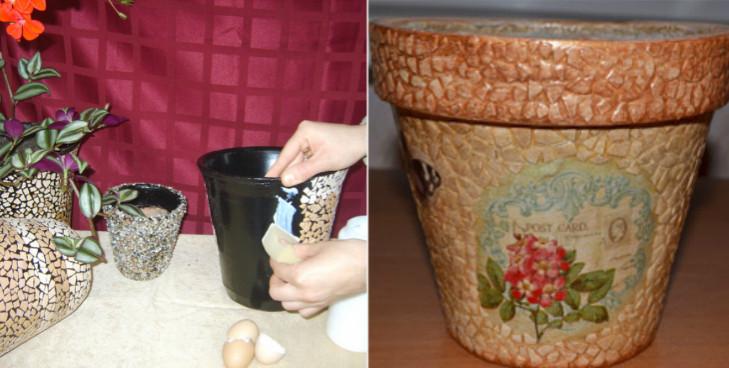 Вот почему я перестала выбрасывать яичную скорлупу... Теперь превращаю ее в нечто потрясающее!