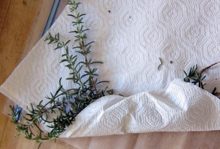 11 гениальных лайфхаков с использованием бумажных полотенец. Бумажное полотенце — чудесное изобретение!