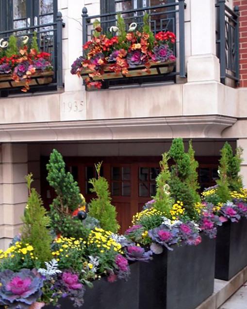 Самый простой способ создать цветущий сад за окном. Вот оно, мое летнее настроение!