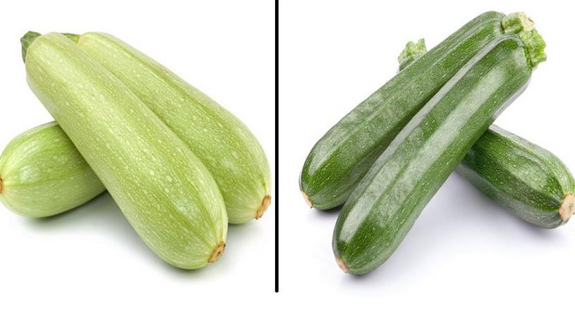 В чём разница между обычными кабачками и цукини? Раньше я думала, что они отличаются только цветом...