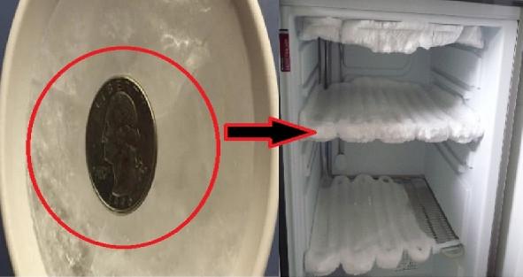 Уезжая в отпуск, оставила монетку в морозилке... Теперь ты поступишь так же!