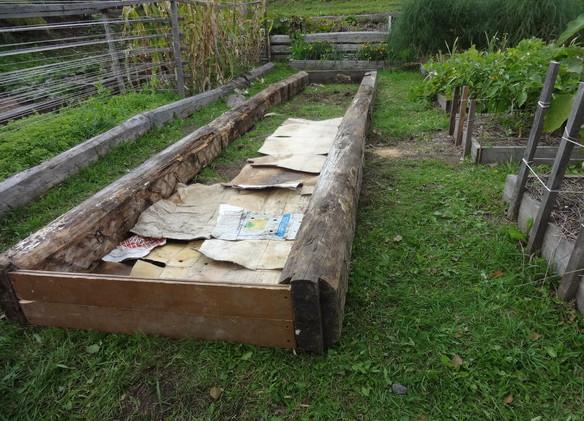 Оригинальные идеи и советы для дачи и сада