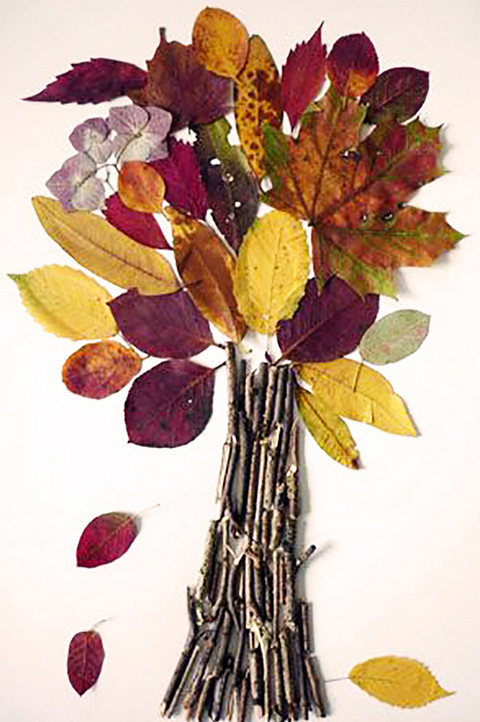 Теперь по дороге домой я собираю осенние листья и желуди. Увидев результат, ты станешь поступать так же!