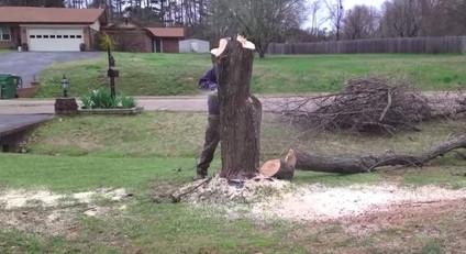 Мастерица решила использовать пень, оставшийся от срубленного дерева, неожиданным образом...