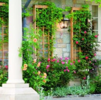 Удобная и красивая конструкция для вьющихся растений. Схема и Мастер-Класс.