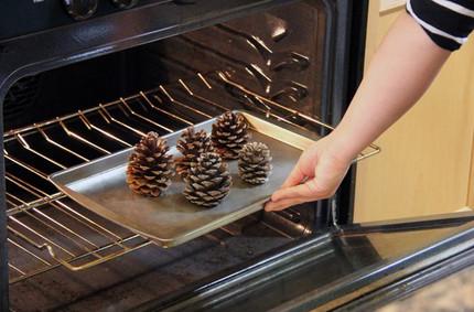 Арома-шишки для дома: сделать просто, главное знать несколько тонкостей...