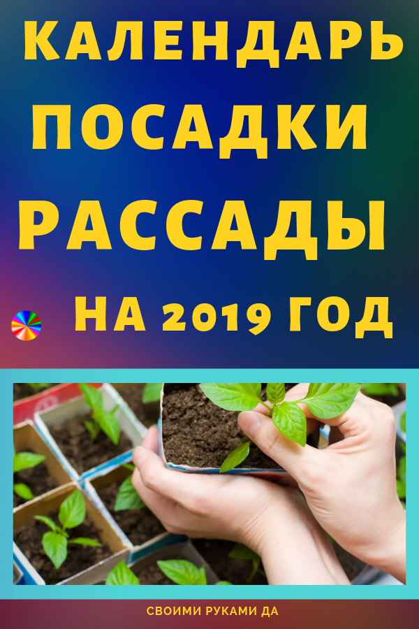 Работа в саду или огороде требует огромных затрат, как физических, так и духовных. Ведь необходимо не просто посадить растение, но и сделать это с душой и умом. Благоприятные дни для посадки рассады в 2019 году по лунному календарю.