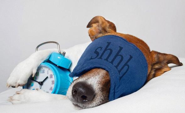 Как заснуть за 60 секунд— уникальная техника 4-7-8