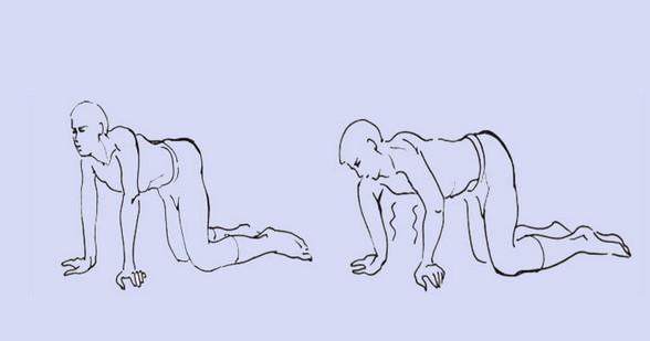 Если болит спина: 5 упражнений вместо обезболивающих