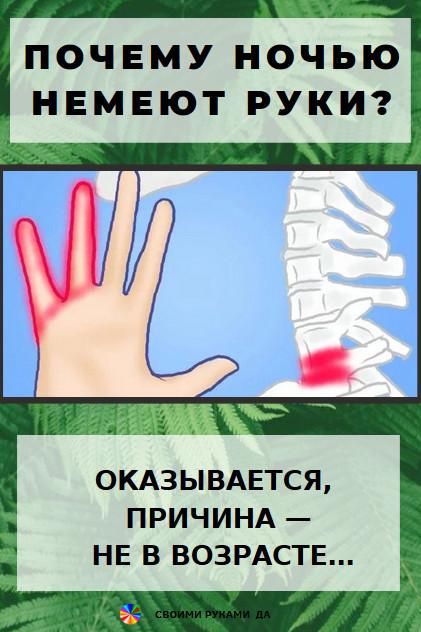 Здоровье: почему немеют руки ночью? Чаще немеет какая-либо ее часть, что полностью зависит от причины болезни: 1.