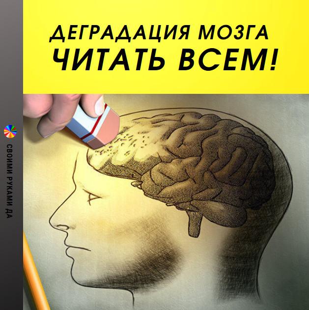 Здоровье и психология: С каждым днем все больше людей жалуется на проблемы с мозговой деятельностью — на все возрастающую рассеянность (т.е. невозможность концентрировать свое внимание, собираться с мыслями для решения каких-то задач), на сложности с запоминанием информации, на физическую невозможность читать большие тексты, не говоря уже про книги.