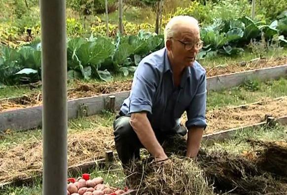 Умный огород Замяткина: участок не знает лопаты уже 20 лет. Советы для дачи своими руками
