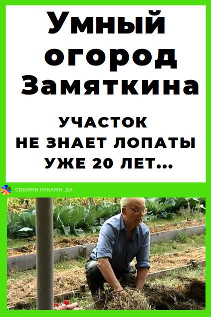 Дача и огород своими руками: По его словам, за десять лет плодородный слой углубился до 30-40 см. Почва стала такой рыхлой, что колышки для томатов не надо вбивать — легко втыкаются. Урожай картофеля приблизился к двум тоннам с сотки.