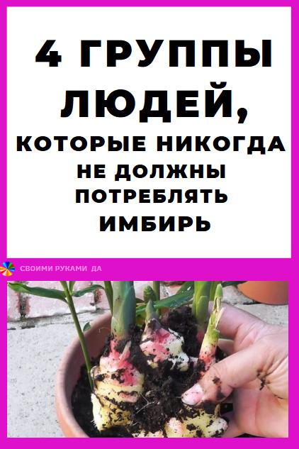 Имбирь – это растение, которое содержит питательные вещества и биологически активные соединения, которые оказывают невероятную поддержку физическому и психическому состоянию нашего организма.