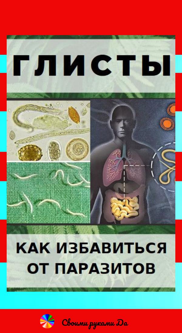 Глисты: Как избавиться от паразитов без таблеток в домашних условиях
