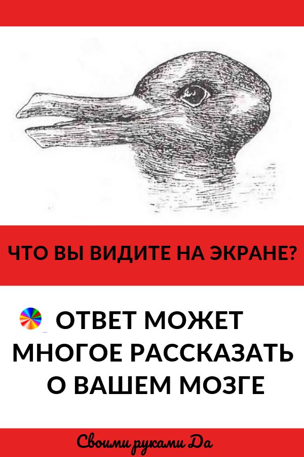 Интересное и психология: Наш мозг может испытывать затруднения с интерпретацией информации в отсутствие контекста, и те, кому удается увидеть... Новое исследование показало, что половина людей в первые секунды не видели ни кролика, ни утки, глядя на эту классическую оптическую иллюзию.