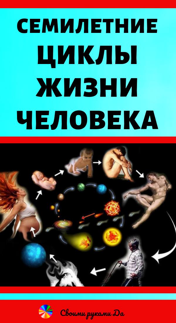 Семилетние циклы жизни человека и их значение