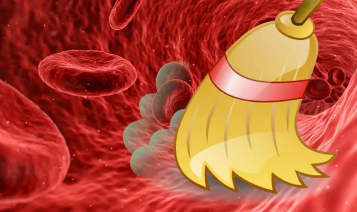 Как почистить сосуды и кровь народными средствами