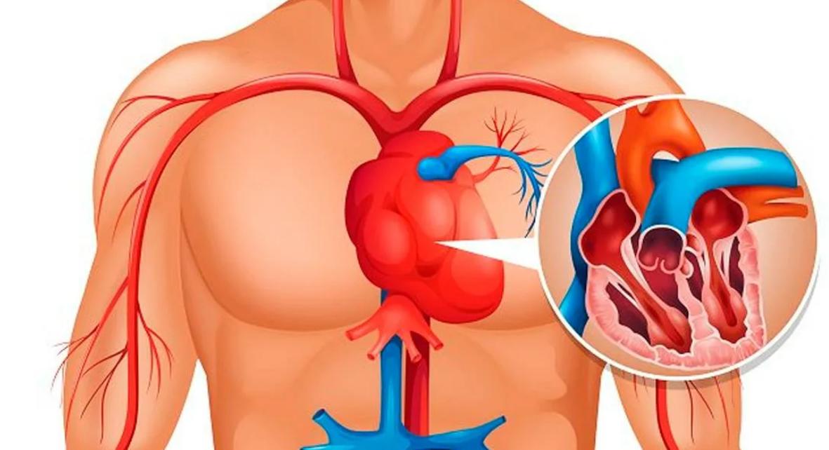 5 серьезных признаков плохого кровообращения!