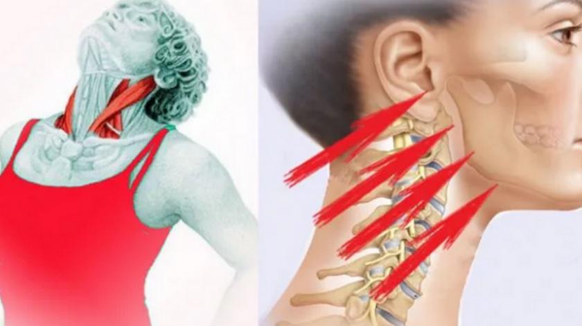 Упражнение «Бабочка»: укрепляем шею и подтягиваем подбородок...